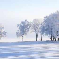Le blog Charles Viancin regorge de bonnes idées cadeaux et décos pour faire plaisir à vos proches. Toujours inspiré par nature, nos idées sont à essayer !