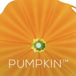 Banner Pumpkin Autumn 1500500